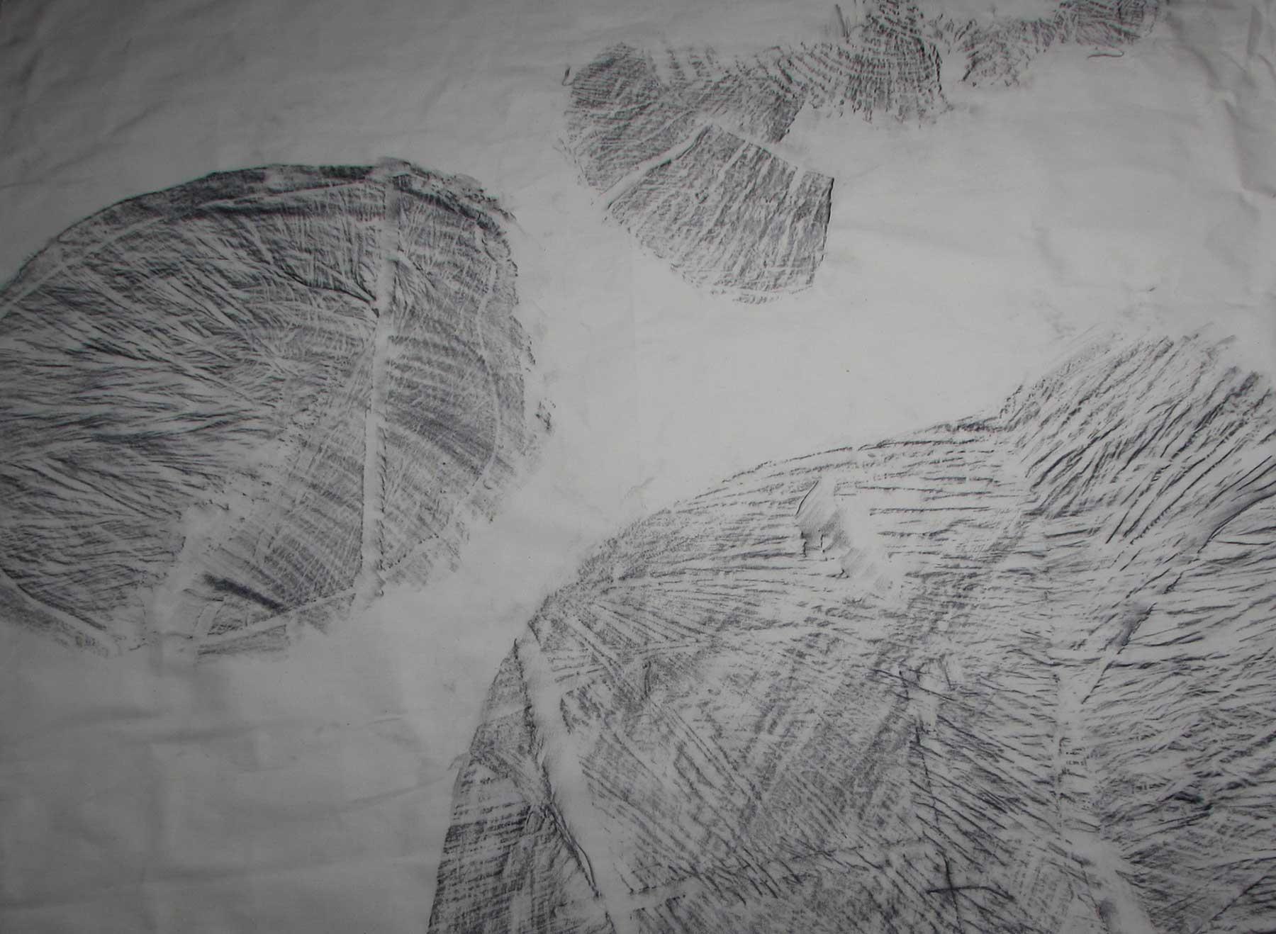 nicolapedana-Troisi-ricordo--2018-grafite-su-tela--particolare