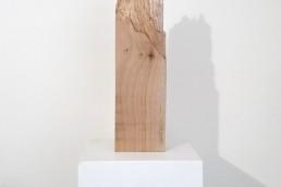 senza titolo, 2021, legno, 50x6x14cm